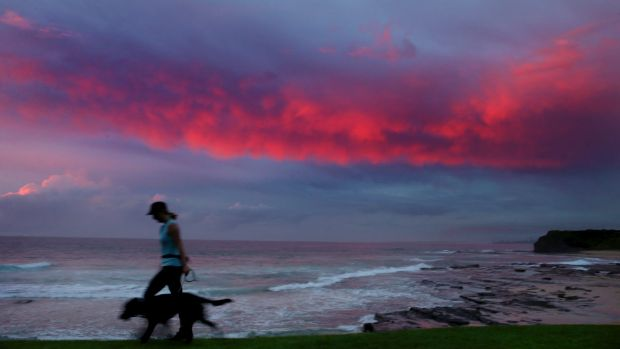 A hot night is forecast for much of Sydney.