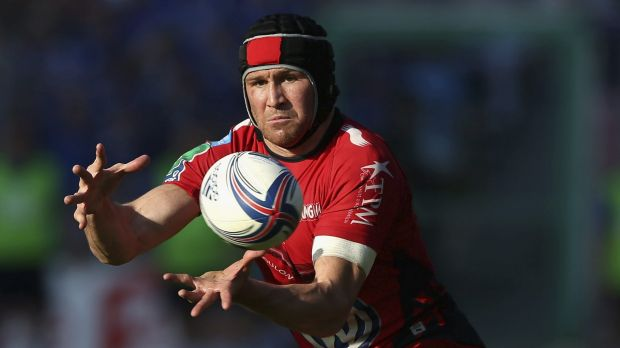 In the frame: Matt Giteau's form for Toulon would have him firmly in World Cup calculations.