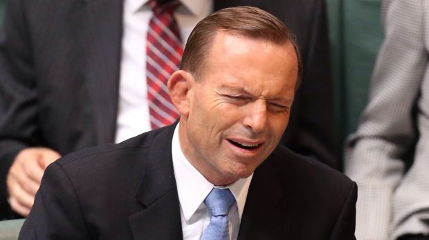 Prime Minister Tony Abbott has rejected a report from the UN that says Australia has breached its obligations on the ...