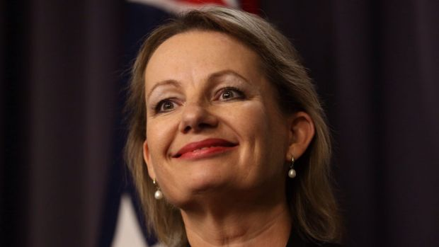 Exploring alternative options: Health Minister Sussan Ley.