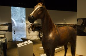 This weekend is the last chance to check out Spirited: Australia's Horse Story at the National Museum of Australia.