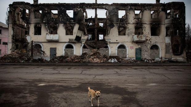 A dog walks past a destroyed building in Uglegorsk, Ukraine.