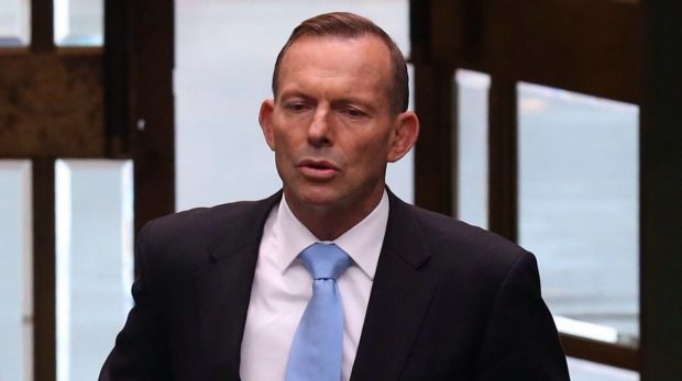 Prime Minister Tony Abbott says he proposed allowing young Australians to dip into their superannuation in the early 1990s.