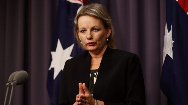 """""""The Abbott government is committed to working with the mental health sector to deliver effective, efficient and ..."""