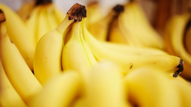 Tests from a quarantined north Queensland banana farm have confirmed the presence of a fungal infection capable of ...