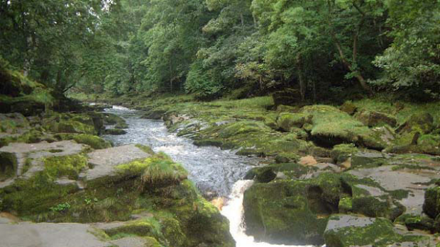 A generic photo of River Wharfe in Britain where Heselden's body was found.