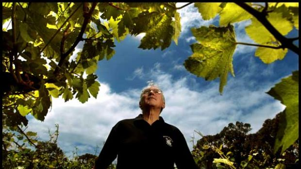 One of the lucky ones - Nat White on his thriving Mornington Peninsula vineyard.