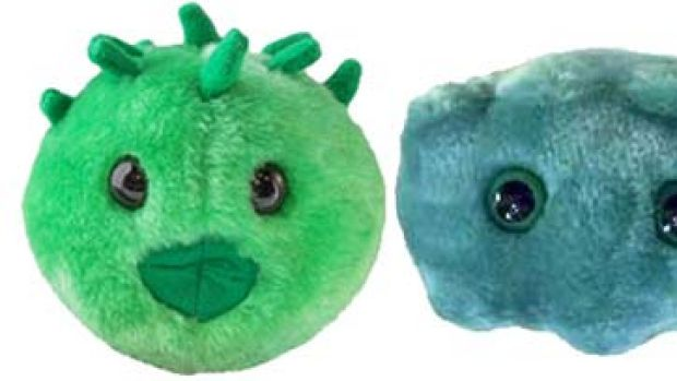 Fully sick toys that are catching on ... Chlamydia, Oral malodor (bad breath) and Rabies, by GIANTmicrobes.