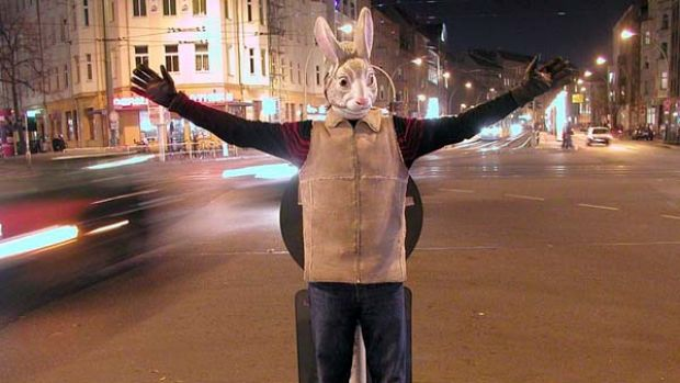 Animal collective ... the performers challenge the more banal aspects of the modern urban existence.