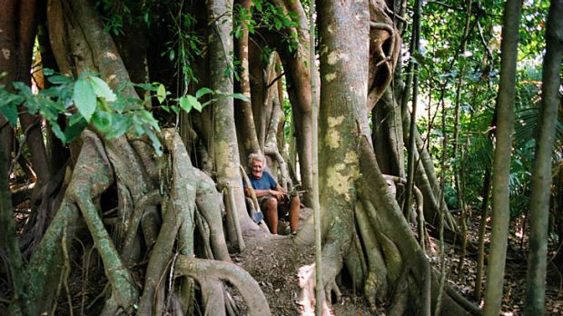 Now and then ... Michael Fomenko, at 80, and in his tree house near Cairns.