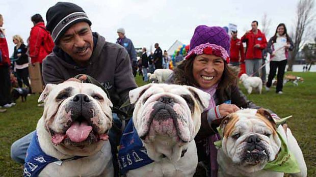 Putting their best paws forward are Ben and Cora Urzabia with their Australian bulldogs.
