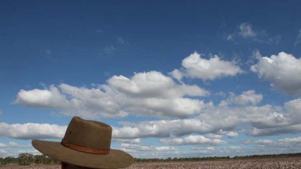 """""""A constructive heart"""" ... Greg Hunt says the Coalition will consider Labor's carbon farming bill."""
