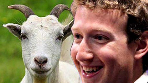 Mark Zuckerberg's new challenge: slaughtering goats, chickens and pigs.