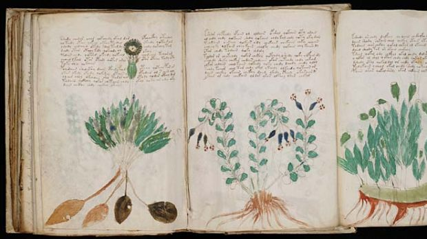 The Voynich manuscript has intrigued and frustrated linguists for centuries.
