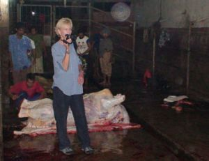 Campaigner ... Lyn White in an Indonesian abattoir.