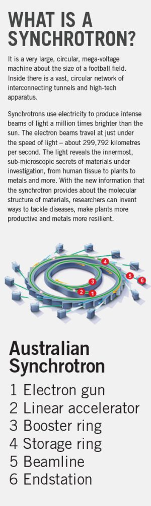 What is a synchrotron?