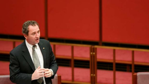 """Meaningless gesture"" ... Barnaby Joyce's views on the Coalition's ""Direct Action"" policy."