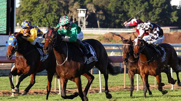 Red-letter day: Favourite Scarlett Lady runs away with the Queensland Oaks.