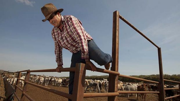Nick Thorne with up to 5000 head of cattle marked for export but now left in limbo at his export yard south of Darwin.