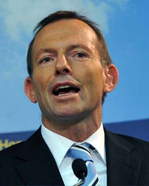 """Tony Abbott ... the government """"just can't get anything right""""."""