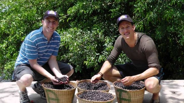 'Superfood' ... Dwayne Martens (right) and Chris Norden with the berries.
