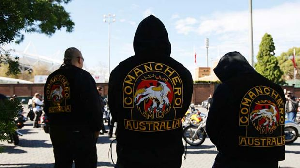Two bikies are facing drugs and weapons charges.