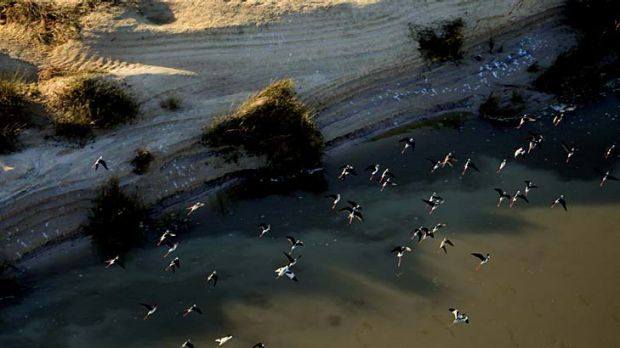 The long-term health of the Murray Darling Basin and the faming communities around it depends on more water being ...