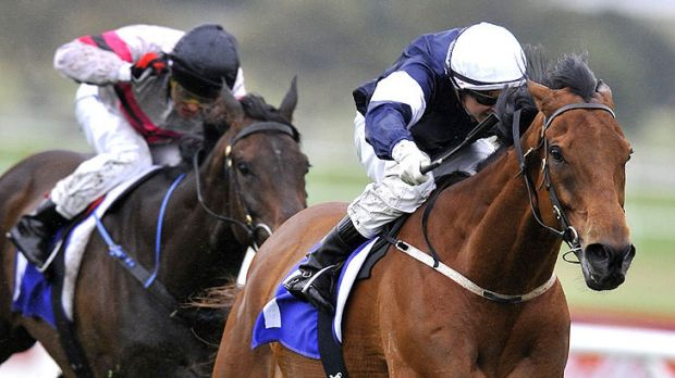 Zipping (right) sustained a leg injury soon after his unplaced run in the Orr Stakes in February.