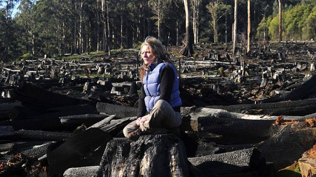 Activist Sarah Rees is worried that logging in the Toolangi State Forest will destroy the habitat of the Leadbeater's possum.