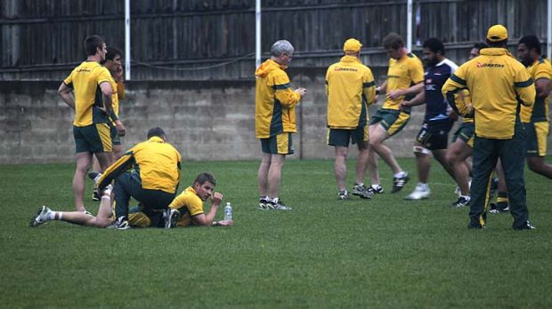 Survival of the almost fit … Wallabies World Cup hopefuls are put through fitness tests at Coogee yesterday.