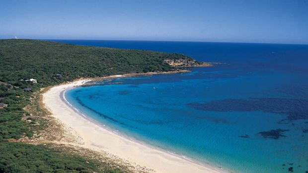 The idyllic Bunker Bay was the scene of terror yesterday after a 21-year-old man was mauled by a shark.