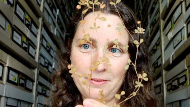 Angela Moles ... the Eureka Prize winner with a sprig of clover from 1948.