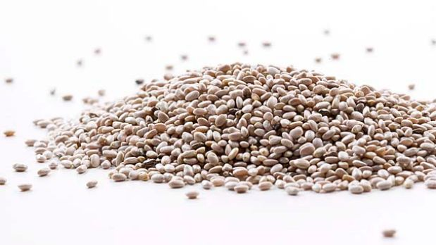 New crop ... White chia seeds grown by The Chia Co.