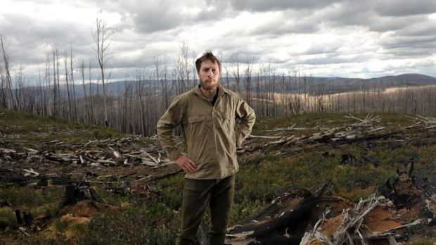 ANU researcher David Blair stands amid burnt timber in the Marysville State Forest, which has been denuded of old-growth ...