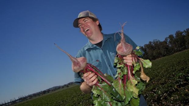 Back to his roots … Ed Fagan was faced with ploughing his beetroot back into the soil until Dick Smith bought the crop.