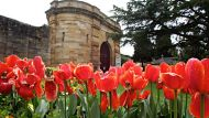Berrima Correctional Facility. The gardens outside the facility before its permanent closure this month. 11th october ...