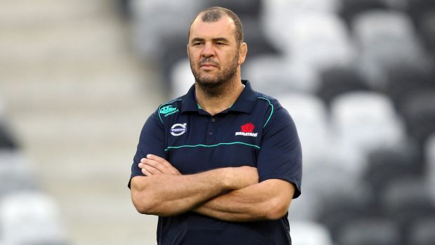 Michael Cheika will team up with Stephen Larkham for the Wallabies' World Cup campaign.