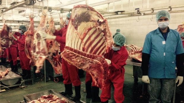 ALM Industries, one of the biggest buffalo abattoirs in India, in the northern state of Uttar Pradesh. Indonesia may ...