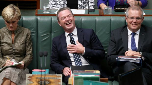 """""""I'm a fixer"""": Christopher Pyne in Parliament with Julie Bishop and Scott Morrison."""