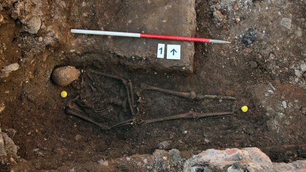 The twisted skeleton of King Richard III that was uncovered by a University of Leicester archaeology team.