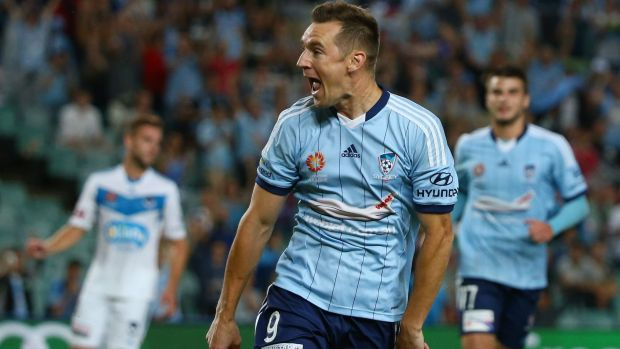 Prolific: Sydney FC striker Shane Smeltz.