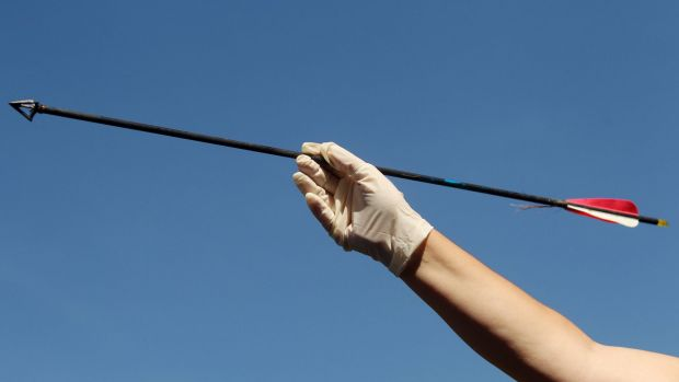 The man was shot with an arrow similar to the one pictured.
