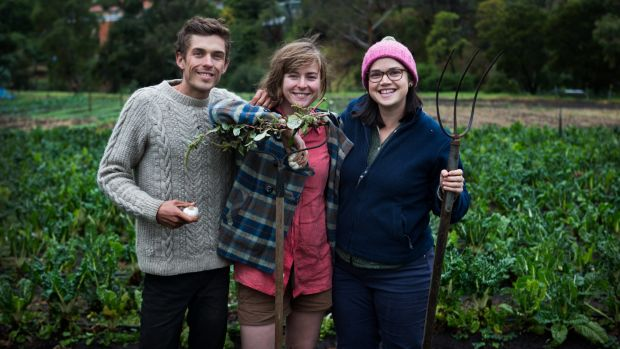 Paul Miragliotta, Emily Connors  and Em Herring (right) are thrilled to be taking part in the Pop-up Garlic Farmer – an ...