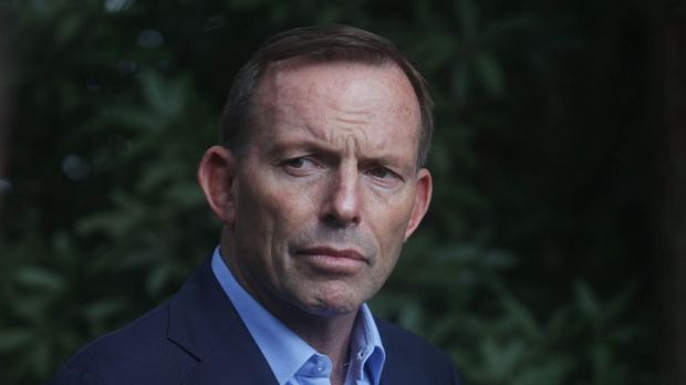 Prime Minister Tony Abbott should now act on constitutional recognition of Indigenous Australians.