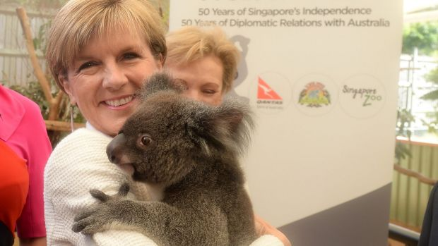 Koala diplomacy: Foreign Affairs Minister Julie Bishop.