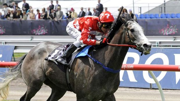 Top flight .. Danny Nikolic rides The Big Steel at last year's Crown Oaks Day.