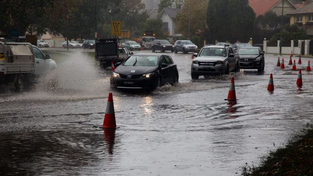 A quarter of car owners say they have driven through floodwater, with 46 per cent of those saying they did not think it ...