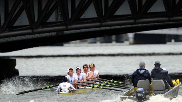 Oar inspiring … the Sydney University eight, superbly coxed by Will Raven, were forced to fight hard as they beat ...
