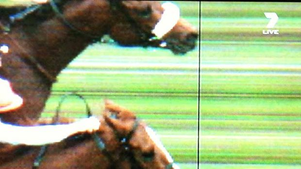So close ... Dunaden just edges ahead of  Red Cadeaux.