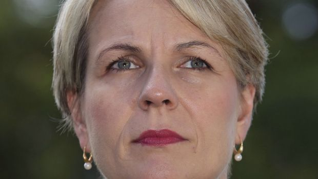 """Labor's foreign spokeswoman Tanya Plibersek says if Mr Abbott believes Australia should be involved in Syria """"he should ..."""
